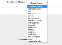 Sendy Newsletter Plugin amember